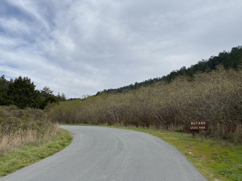 Weekend Wayfarer: Butano State Park