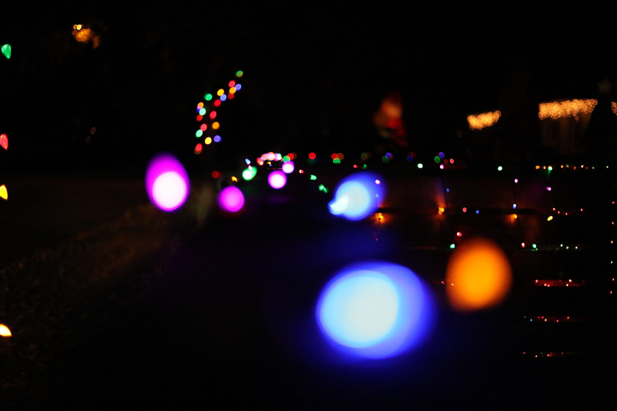 Photo Essay: Festive Lights Jazz Up the Neighborhood