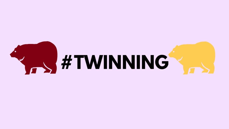 #twinning: Mark and Angie Yang