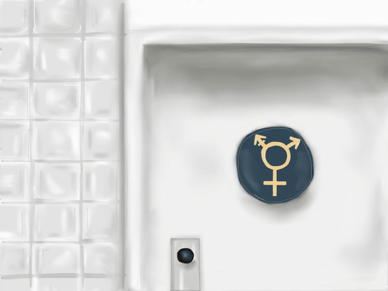 Interpreting Title IX in the Transgender Recognition Battle