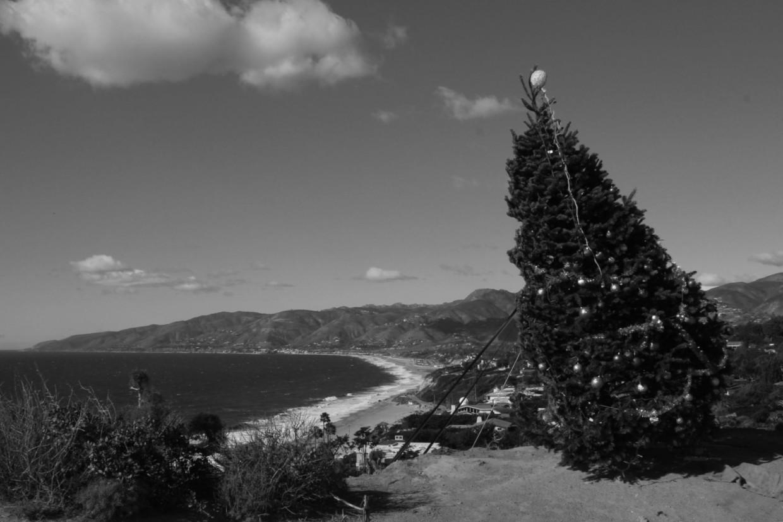 Christmas in Malibu